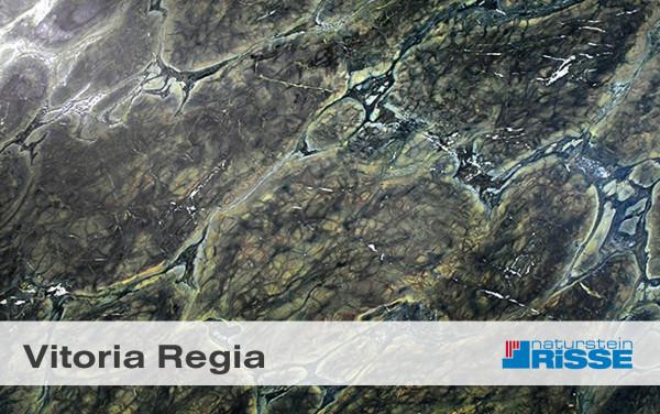 vitoria_regia_vorschau_risse_blog